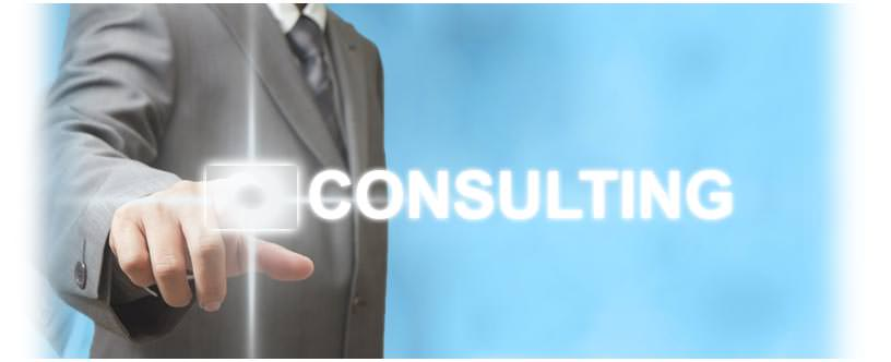 Consulting Web